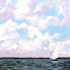 Sailing 11 x 14 Oil SOLD